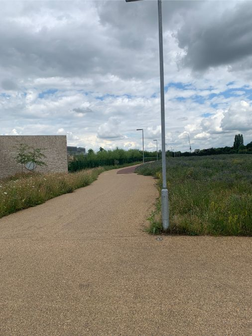 John Chambers Wildflower Seed supplied for new sustainable-living neighbourhood in Cambridge