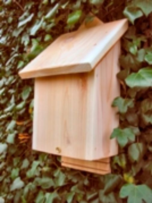 New range of Bat Boxes available